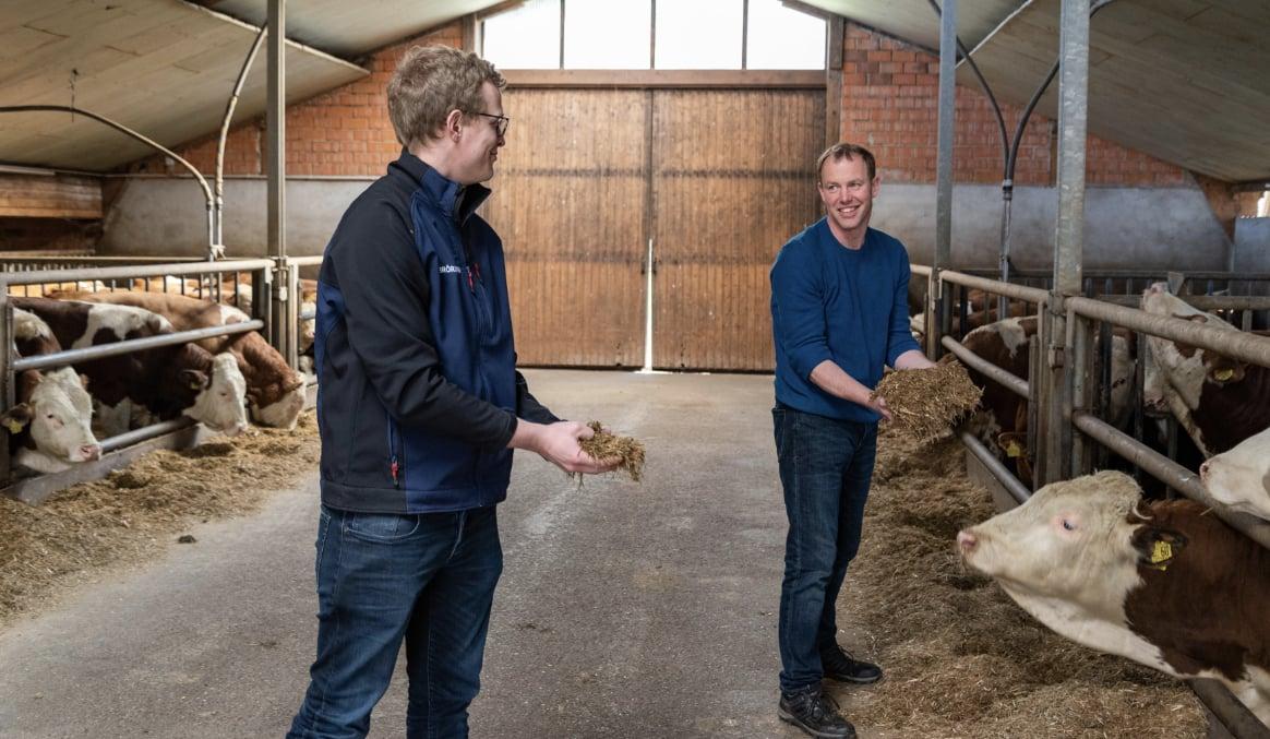 Bröring Mischfutter Dinklage Milchvieh Milchviehfütterung Rationsberechnung Grundfutter Bova Forage Beratung Garms