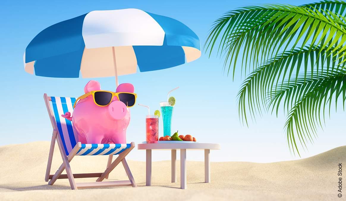 Bröring Futtermittel Schwein Sauen Elektrolyte Stoffwechsel Hitzestress